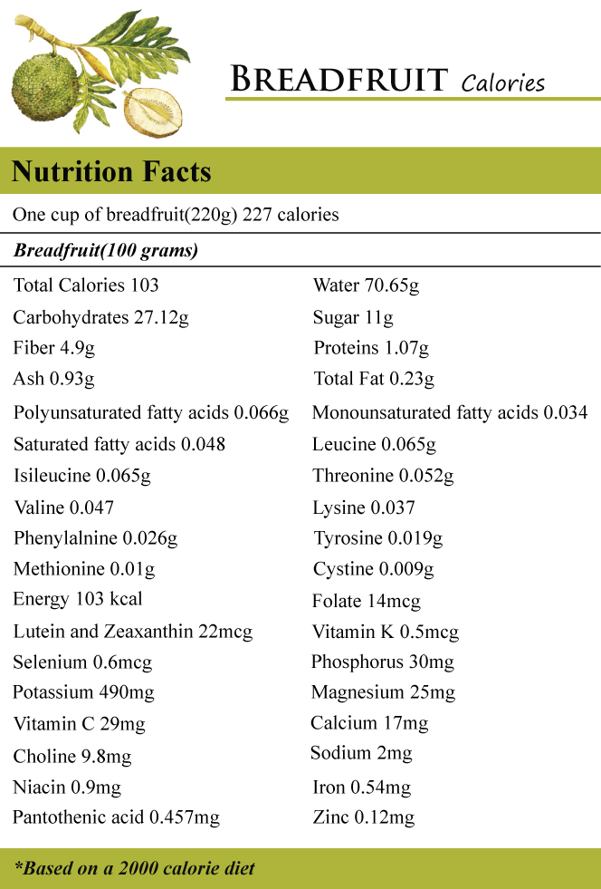 Breadfruit Calories