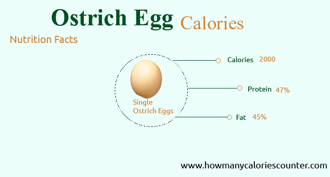 Calories in Ostrich Egg