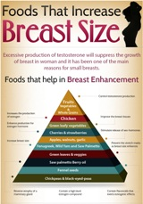 Foods-that-Increase-Breast-Size