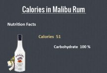 How Many Calories in Malibu Rum