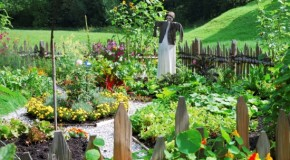 The Top 6 Benefits of Planting your Own Vegetable Garden